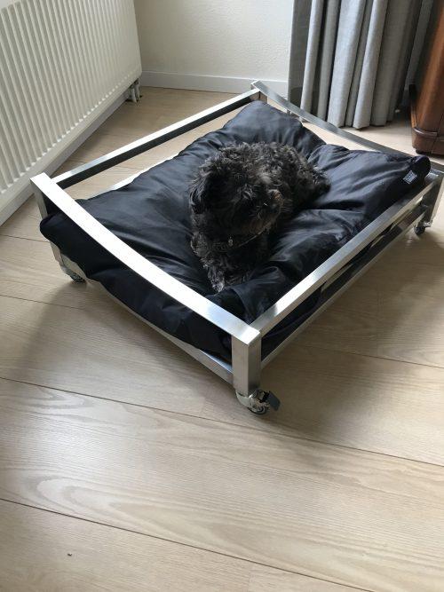 hondenmand rvs